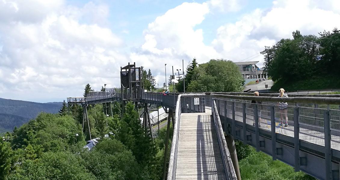 Weitblick auf der Panorama-Erlebnis-Brücke
