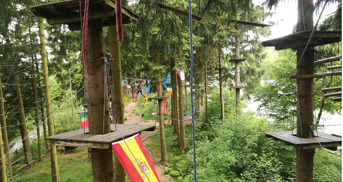 Wilde Abenteuer in den Baumwipfeln